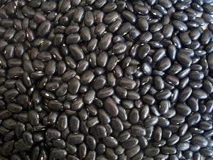 black bean calzone